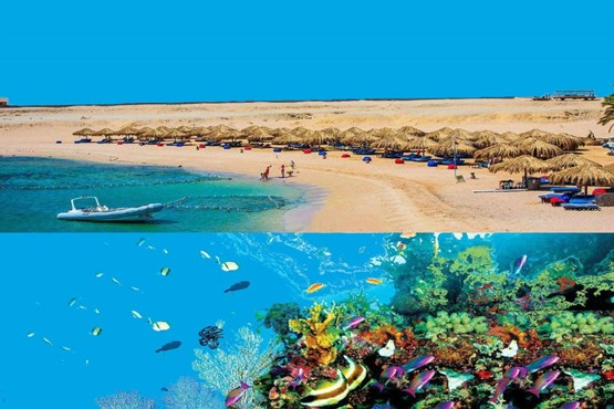 Sharm El Naga Bay - Full Day